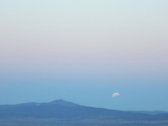 Moon in the Daylight by Sara Penny